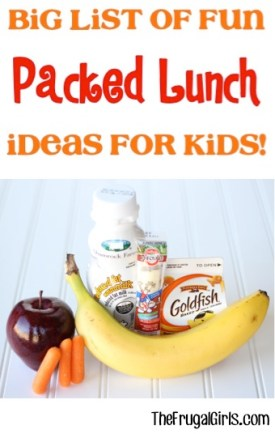 Fun Packed Lunch Ideas for Kids ~ from TheFrugalGirls.com
