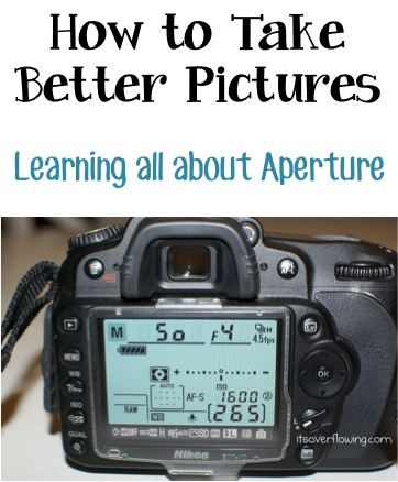 How to Take Better Pictures - Learning all About Aperture at TheFrugalGirls.com