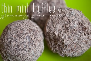 2.27 Carly's Thin Mint Truffles