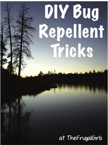 DIY Bug Repellent Tricks