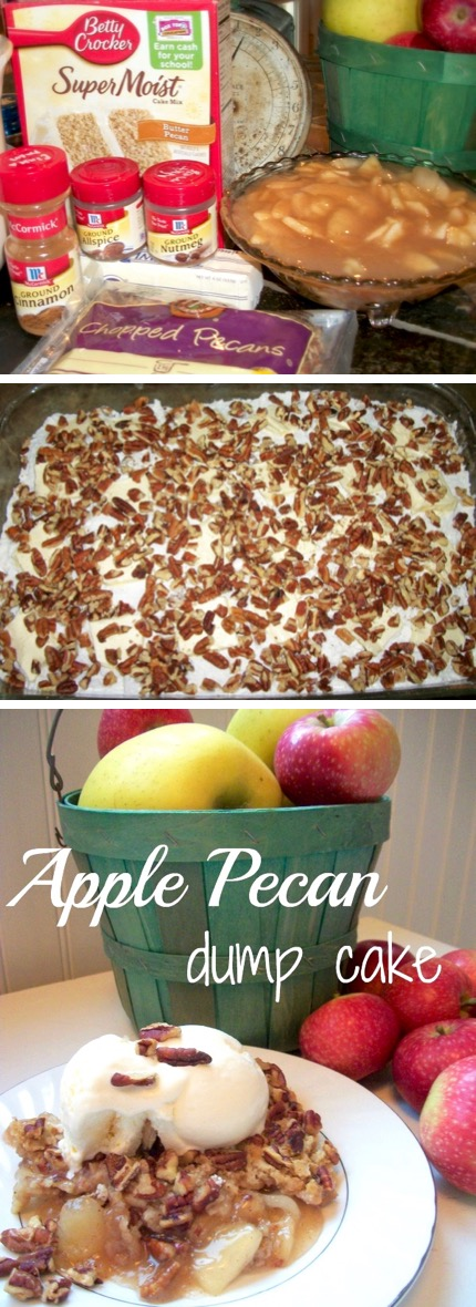 Apple Dump Cake Recipe