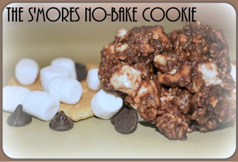 S'Mores No Bake Cookie Recipe at TheFrugalGirls.com