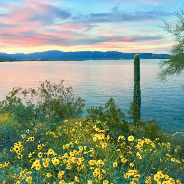 Lake Pleasant AZ Swimming