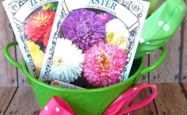 19 Gardening Gift Ideas Fun And Unique Gifts The