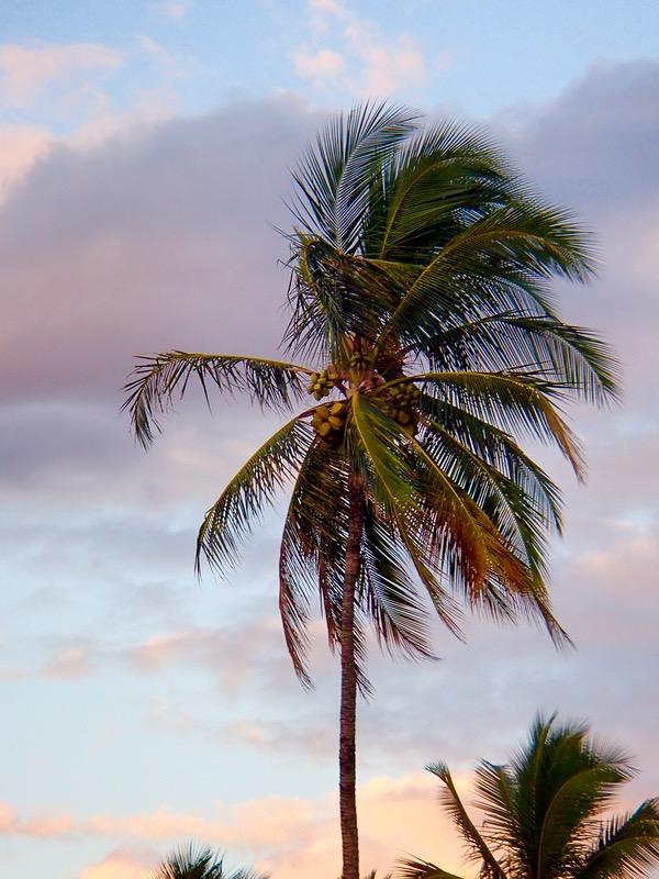 Kauai Travel Tips and Insider Tricks from TheFrugalGirls.com
