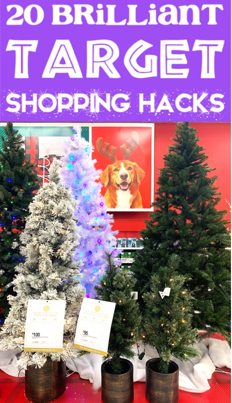 Christmas Decorations for the Home - Target Hacks to Save BIG on Outdoor and Indoor Decor Ideas