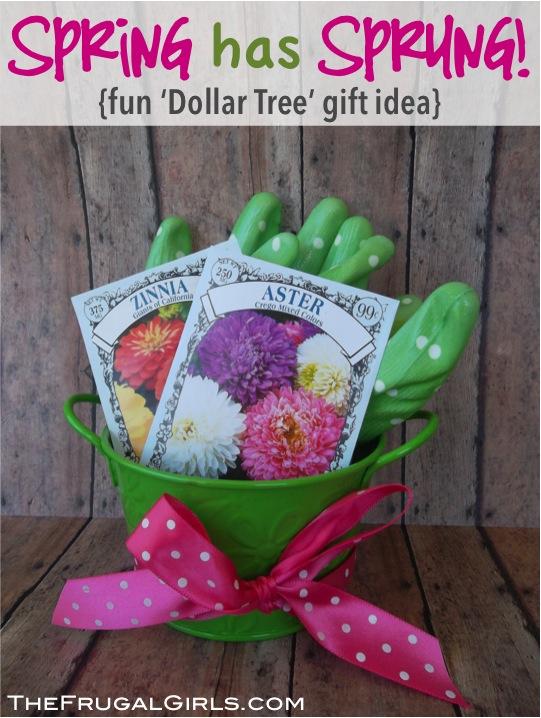 20 Creative Teacher Gift Ideas! The Frugal Girls
