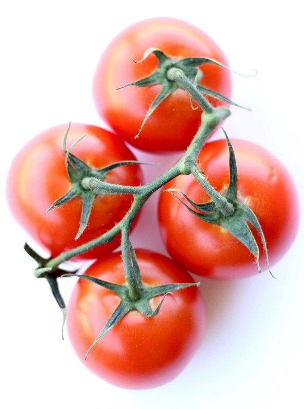 Tips for Growing Perfect Tomatoes Every Time