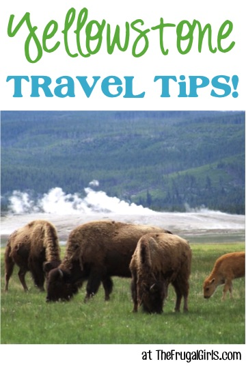 Best Yellowstone NP Travel Tips at TheFrugalGirls.com