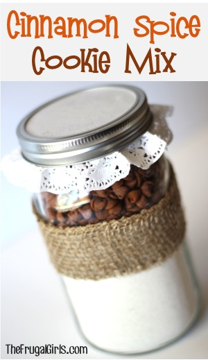 Cinnamon Spice Cookie Mix in a Jar at TheFrugalGirls.com