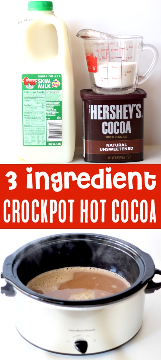 Crockpot Hot Chocolate Recipe Easy Simple Best Cocoa for Parties