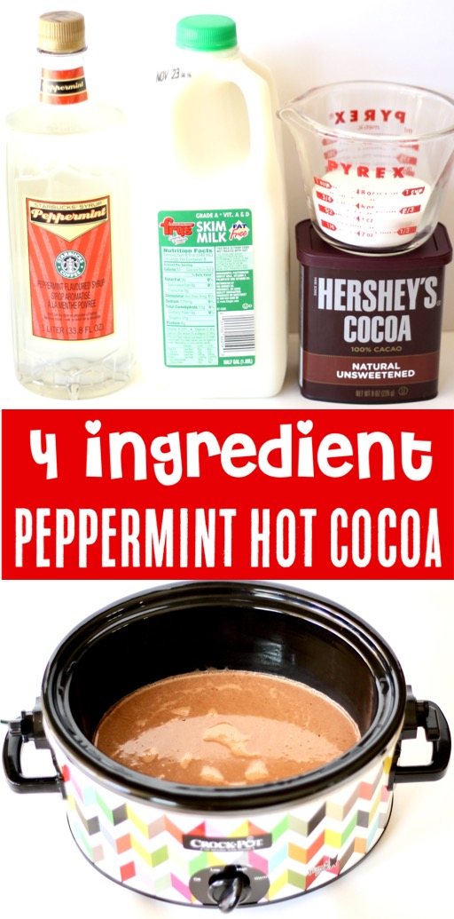 Peppermint Hot Chocolate Recipe Easy