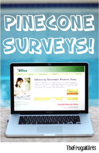 Pinecone Paid Surveys Accepting Applications at TheFrugalGirls.com