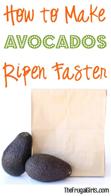How to Make Avocados Ripen Faster- at TheFrugalGirls.com