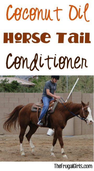 Horse Tail Coconut Oil Conditioner at TheFrugalGirls.com