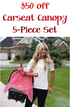 $50 off Carseat Canopy 5 Piece Set at TheFrugalGirls.com