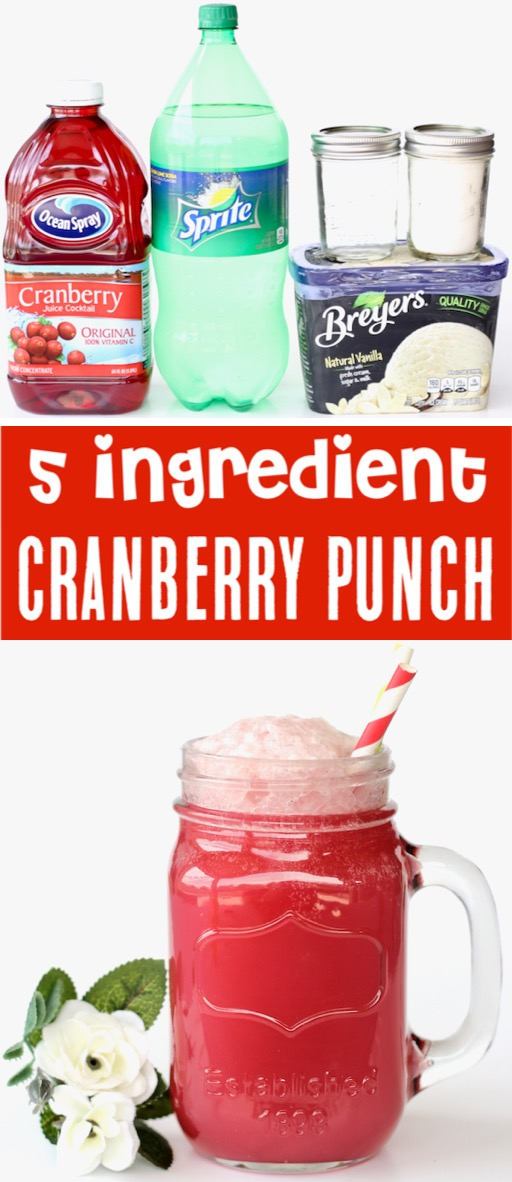 Christmas Punch Recipes Cranberry Party Punch Recipe