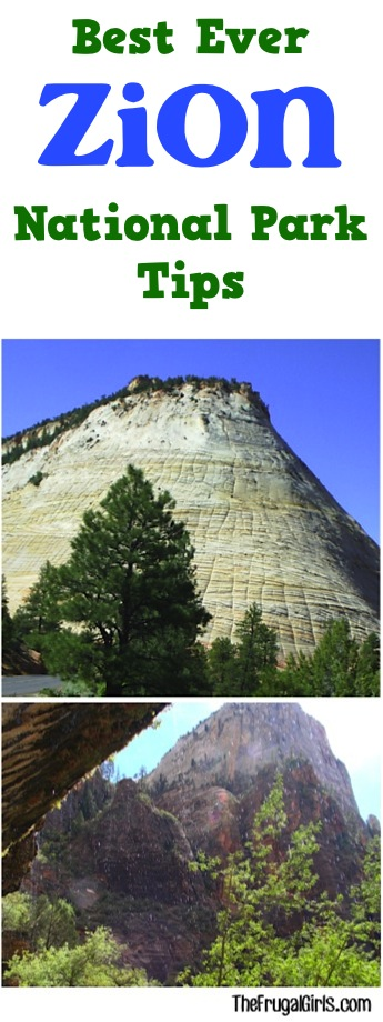 Best Ever Zion National Park Tips
