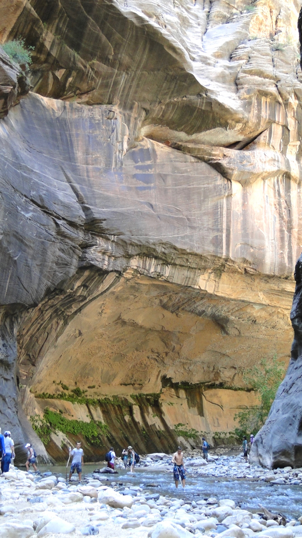 Zion National Park Things to Do | TheFrugalGirls.com