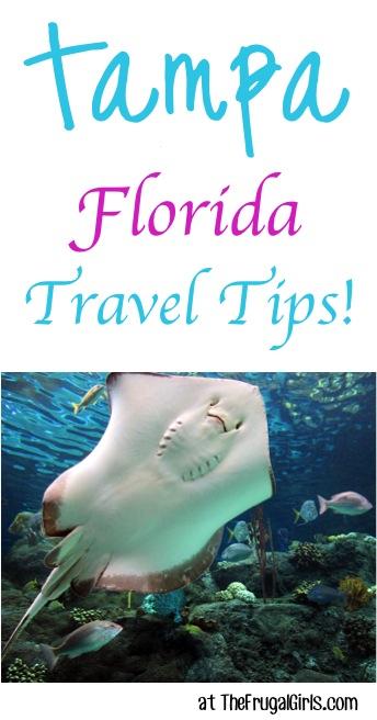 Best Tampa Florida Travel Tips at TheFrugalGirls.com