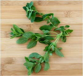 How to Dry Oregano