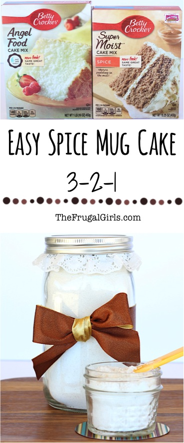 Easy Spice Mug Cake Recipe from TheFrugalGirls.com