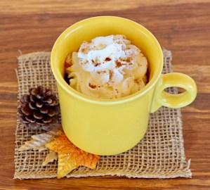 Easy Spice Mug Cake Recipe