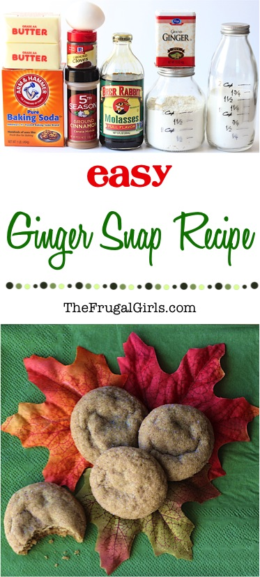 Classic Ginger Snap Recipe from TheFrugalGirls.com