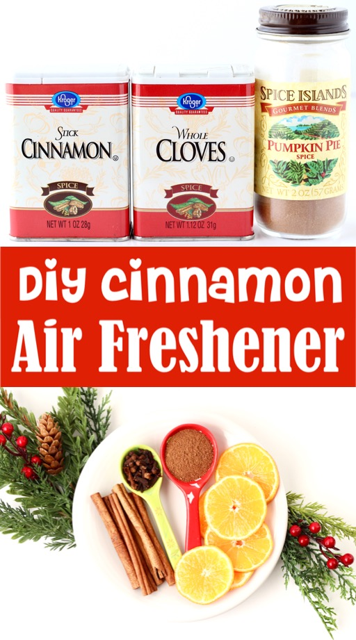 DIY Air Freshener Stovetop Fall and Christmas Room Scent
