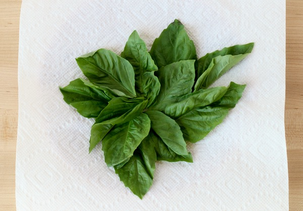 How to Dry Fresh Basil from TheFrugalGirls.com