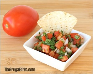 Easy Salsa Recipes from TheFrugalGirls.com