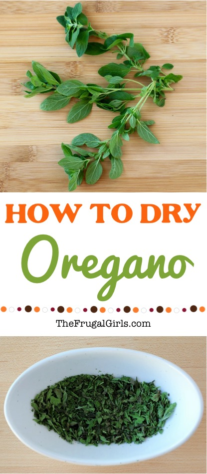How to Dry Oregano Fresh Herbs - Tip from TheFrugalGirls.com