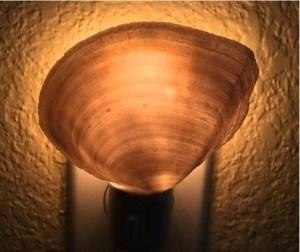 Easy DIY Seashell Night Light