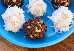 No-Bake Protein Bites Recipe at TheFrugalGirls.com