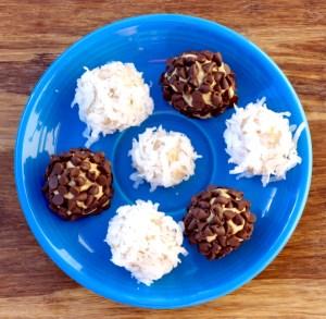 No Bake Protein Bites Recipe from TheFrugalGirls.com