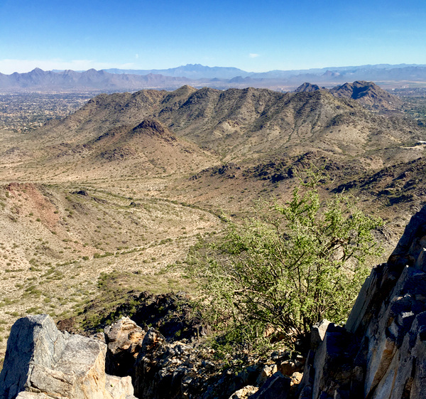 Where to Stay in Phoenix and Best Hikes at TheFrugalGirls.com