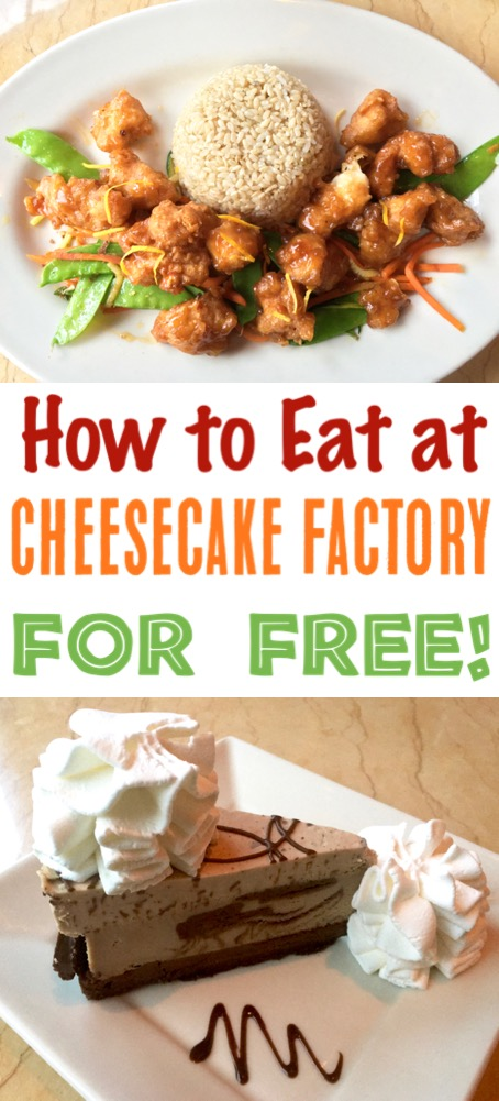 Skip the Cheesecake Factory Copycat Recipes and enjoy the real thing for FREE