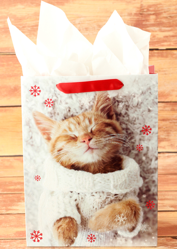 Cat Lover Gifts Gift Ideas