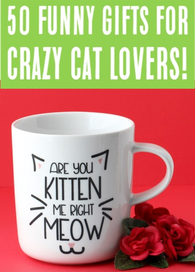 Cats and Kittens Funny Cute Gifts for Cat Lovers