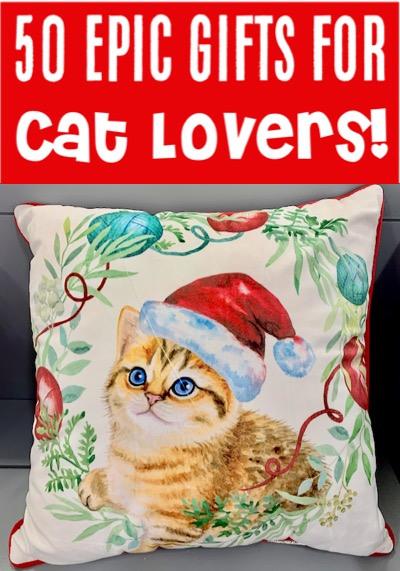 Christmas Gift Ideas for Friends and Family - Women or a Teenage Girl will LOVE these Cat Lover Gift Ideas