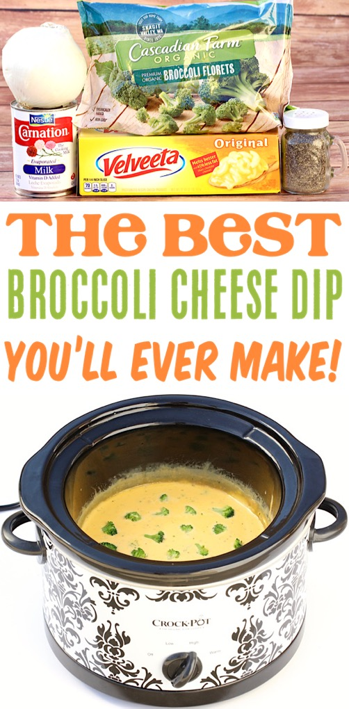 Broccoli Cheese Soup Dip Easy Crockpot Recipe