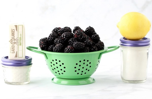Fresh Blackberry Pie Recipe