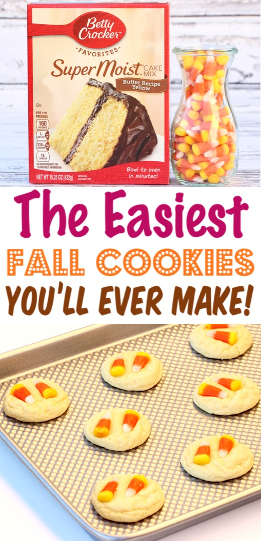 Fall Cookies Recipes Easy
