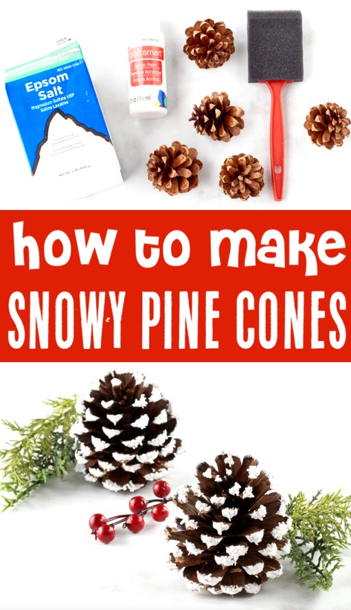 Christmas Decor Ideas and Crafts - How to Make Snowy Pine Cones