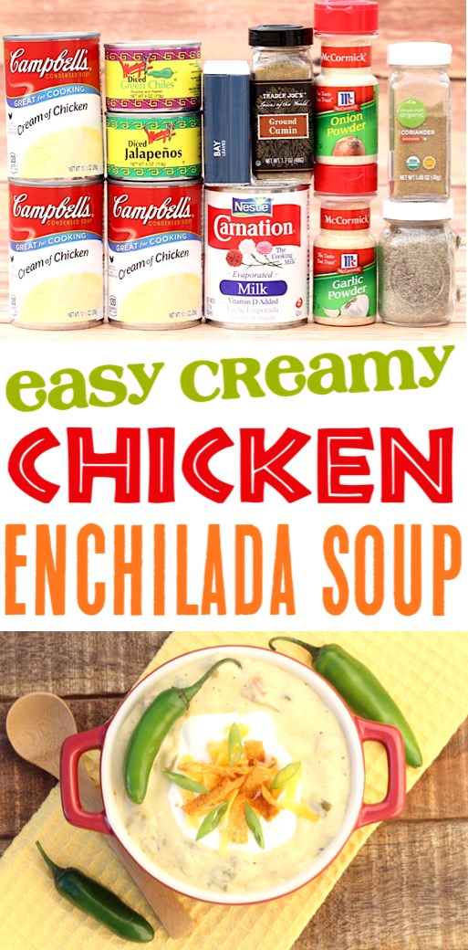 Easy Soup Recipes Chicken Enchilada Soup Recipe