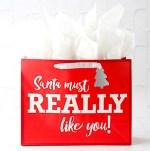 Funny Christmas Gift Ideas for Teens List