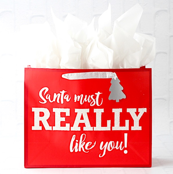 Funny Christmas Gift Ideas for Teens List