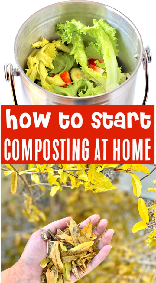Composting for Begginers - What Type of Bin to Use, What to Put In Your Compost Bin