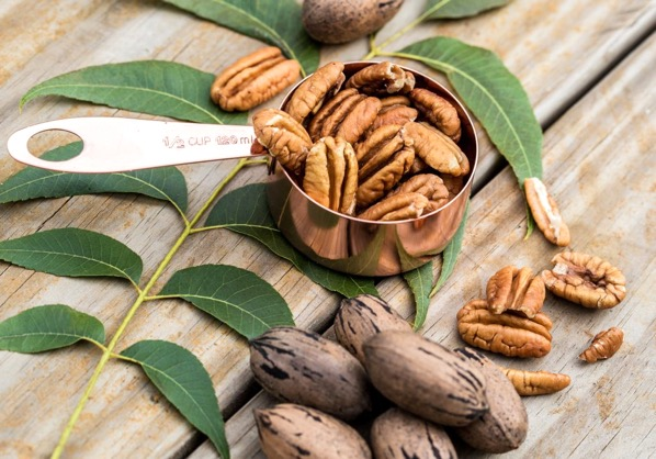 How Long Do Fresh Pecans Last