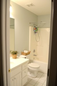 Guest bathroom update  Farmhouse style bathroom gray ...